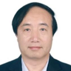 Professor Du Peng
